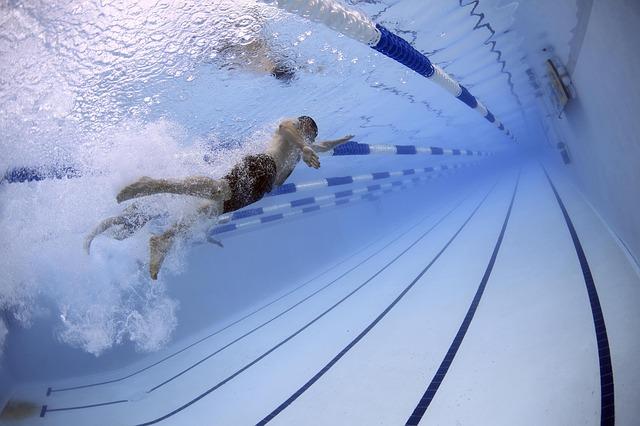 závodní plavec.jpg