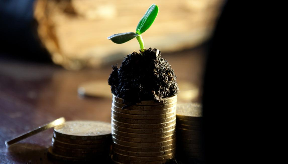 růst peněz